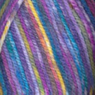 Encore Worsted Colorspun Rainbow 8004  1 Skein